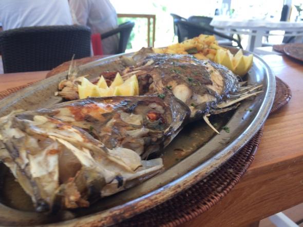 El-chiringito-ibizai-poisson
